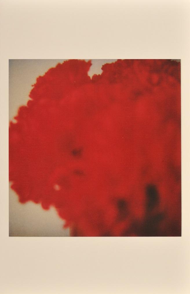 Impression sur papier, 43,1 x 27,9 cm © Cy Twombly. Cliché Richard Cook.